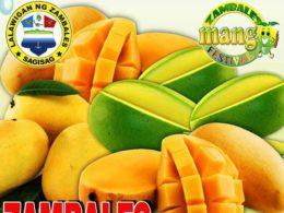 zambales mango festival