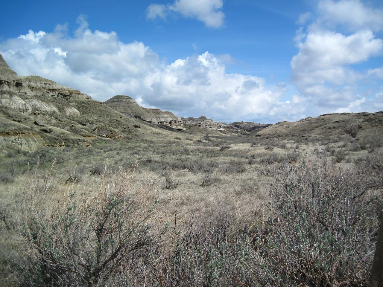 dinosaur provincial park canada natural wonders